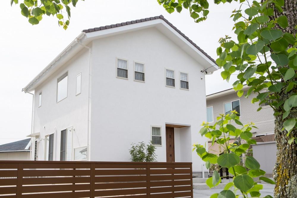 大きな吹き抜けがある  スイス漆喰の家 アイキャッチ画像
