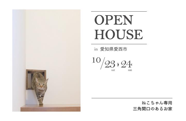おうちの完成見学会~ねこちゃん用三角開口のあるお家~ アイキャッチ画像