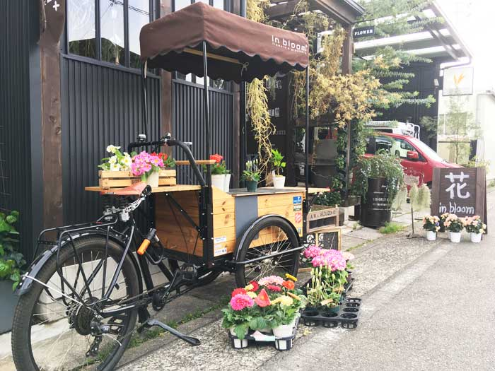 No plants, No life. Flowers!, rock'n roll |グリーンショップ|名古屋市西区 アイキャッチ画像